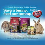 13562 Martin Bunny Ad 01