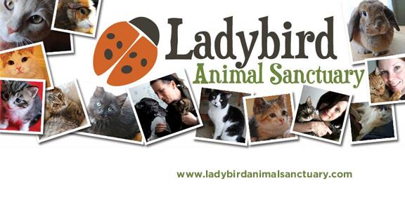 LadybirdAnimalSanctuary